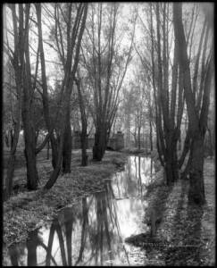 A Ditch in Autumn, Courtesy DPL, Western History Collection, MCC-870