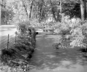View in Lincoln Park, Denver. Courtesy DPL Western History Collection MCC-1311
